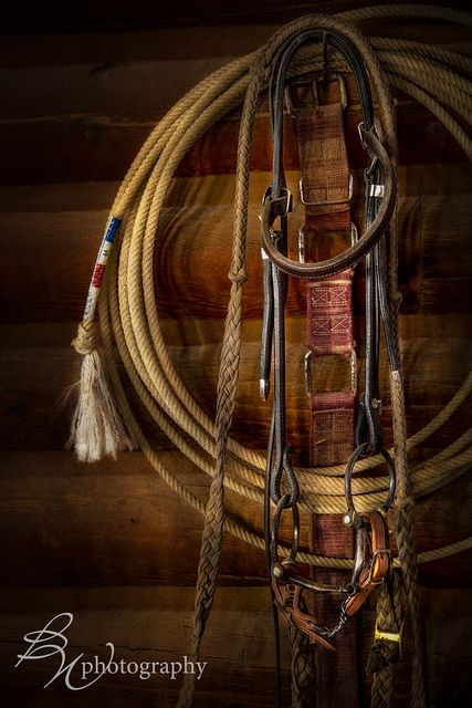 Western tack; photo by .Betty Wiley