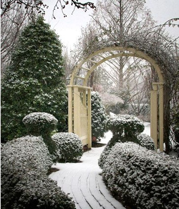 Winterlicher Garten Winter Garden Winter Landscape Beautiful Gardens