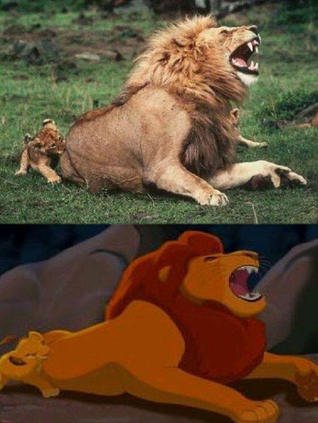 Смешная картинка мем лев это очень хитрый хищник, открытки днем рождения
