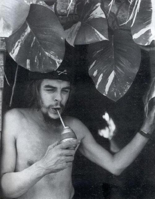 Impresionantes fotografias retro y raras de celebridades !