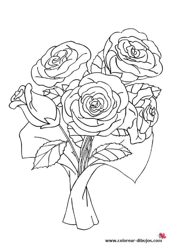 76 mejores imgenes de rosas en Pinterest  Dibujos Flores y