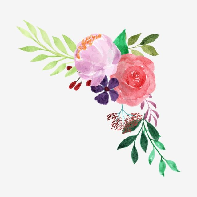 Watercolor Floral Bouquet Plant Watercolor Flower Png