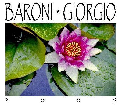 BARONI GIORGIO - NINFEA
