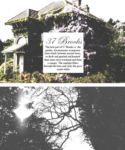 """Delirium Trilogy Meme; 1/4 Locations. """"One house in particular becomes our favourite: 37 Brooks Street, an old colonial that used to belong to a house of sympathizers."""""""