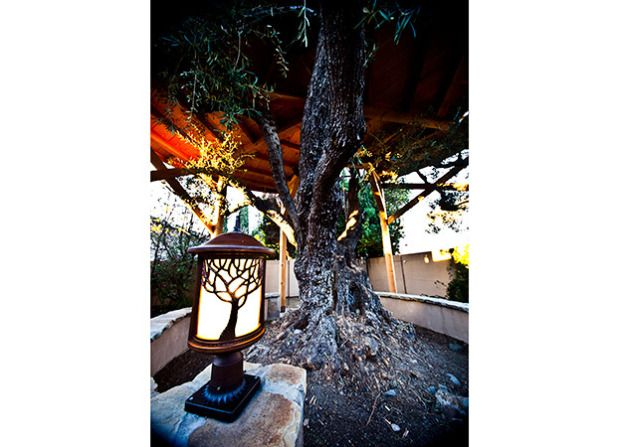 Treehouse Masters Irish Cottage Huntington Beach ...