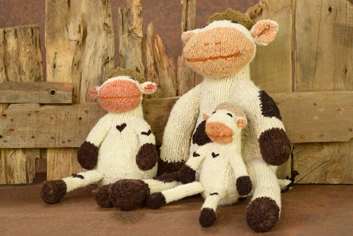 Shamba Cows