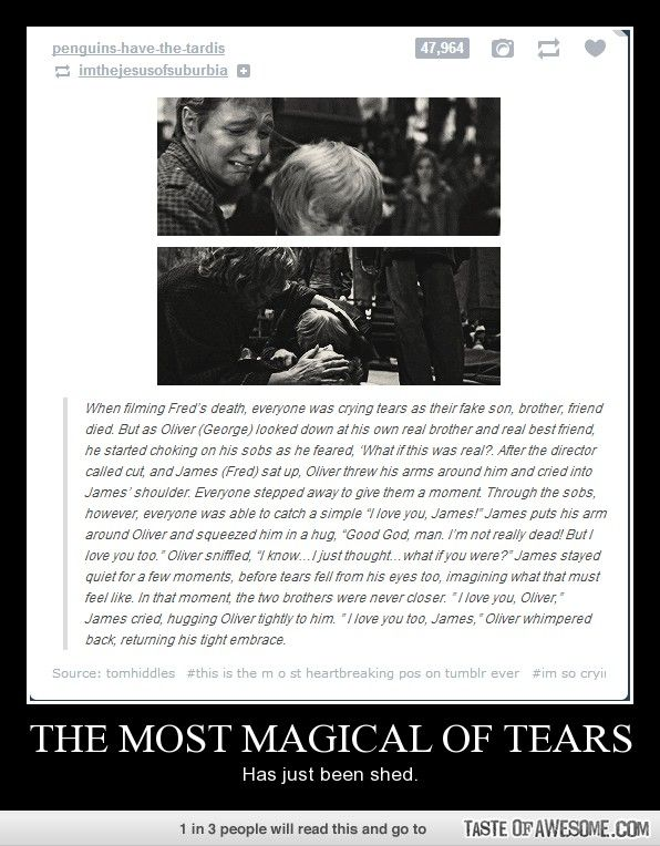If you didn't cry you're not human.