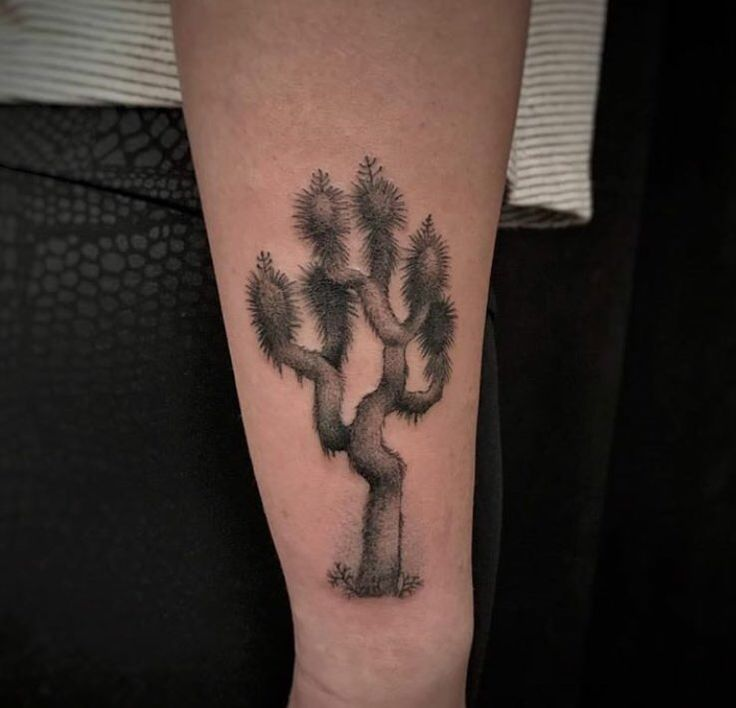 Best 25+ Desert Tattoo Ideas On Pinterest