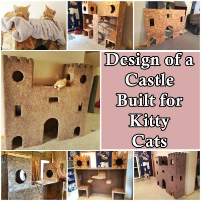 The Homestead Survival | Design of a Castle Built for Kitty Cats | DIY Project  & Pets - Cat - http://thehomesteadsurvival.com