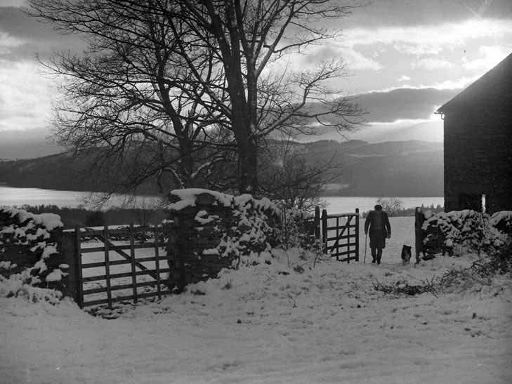Man and dog walking through gate towards camera in snow with Thirlm