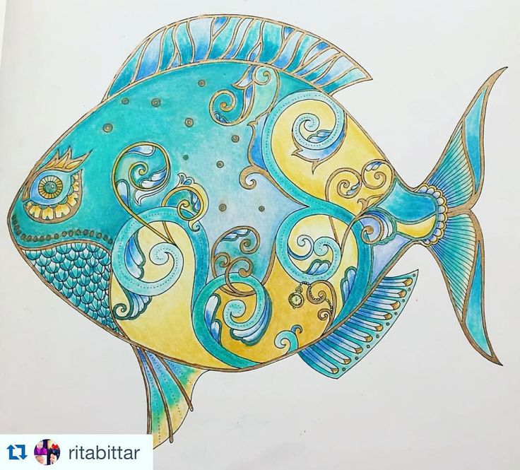 540 best lost ocean johanna basford images on pinterest for Colorful fish book