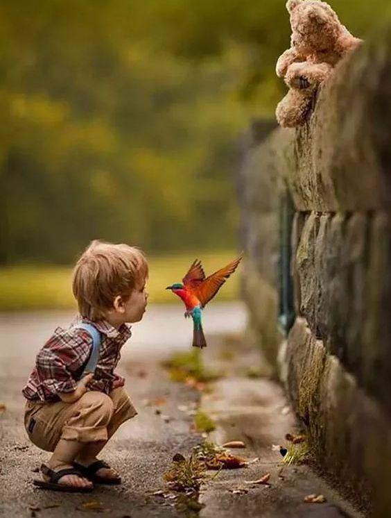 child with view face to face with bird mid-flight #love #photo #cute