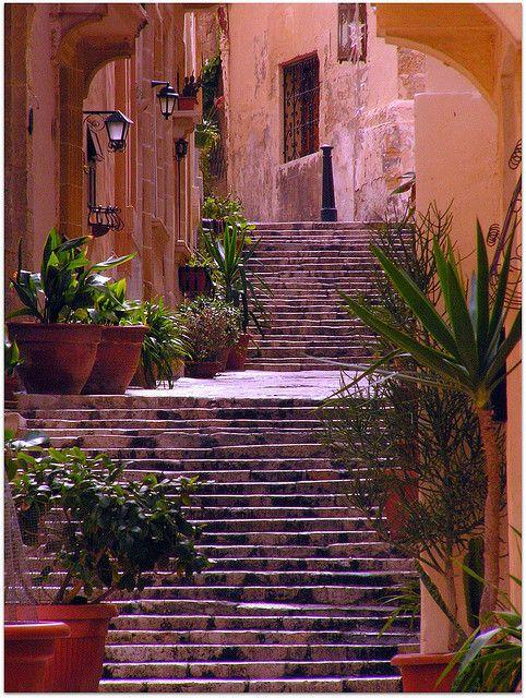 Birgu (officiële naam Il-Birgu; ook wel Vittoriosa of Città Vittoriosa genoemd) is een kleine gefortificeerde stad en gemeente die een belangrijke rol speelde in het Beleg van Malta in 1565. Birgu vormt samen met Cospicua en Senglea de zogenaamde Drie Steden