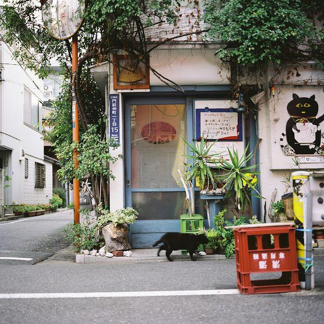 monnaka,Tokyo, Untitled | Flickr - Photo Sharing!