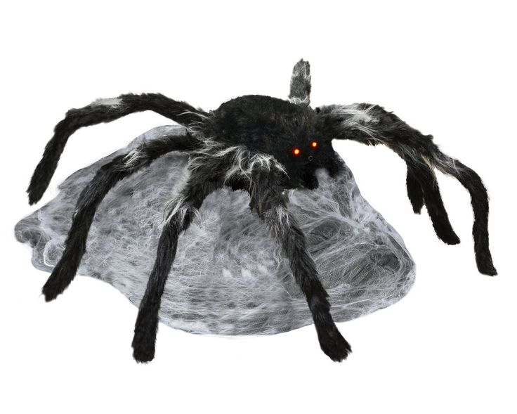 25 best ideas about animated halloween props on pinterest for Animated spider halloween decoration