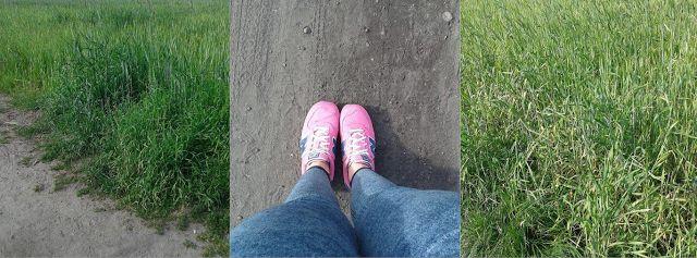 Zdrowo i sportowo : Poranny spacerek :)
