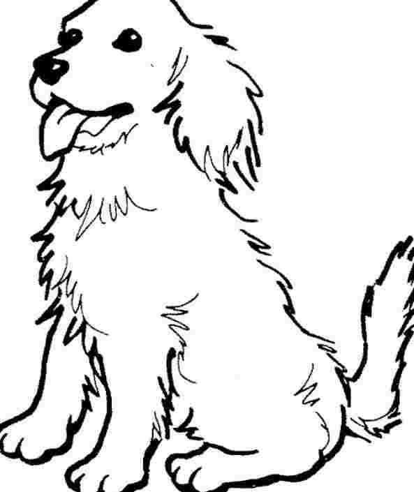 Best Printable Free Printable Dog Coloring Pages 777