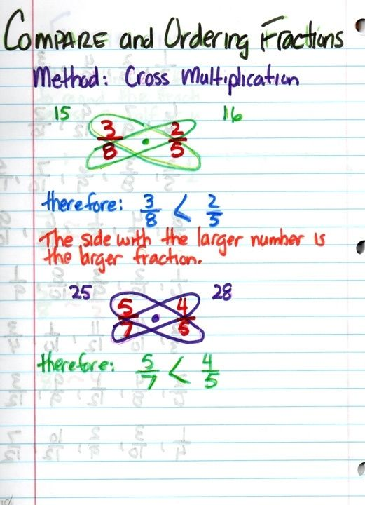 comparing and ordering fractions by Sydney Steinbrueck