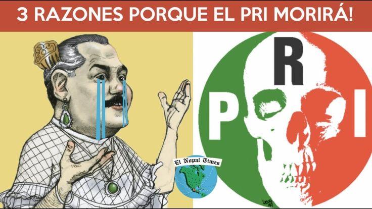 El Juicio de Beltrones Desplomaría al PRI// EL NOPAL TIMES #355