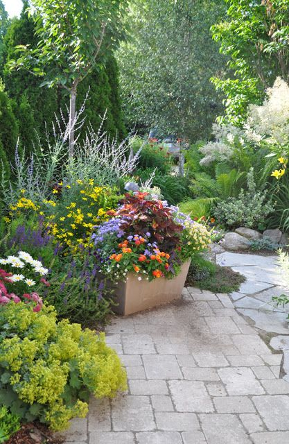 Three Dogs In A Garden: The Summers Prettiest Container Plantings    Gardening Lene Part 76