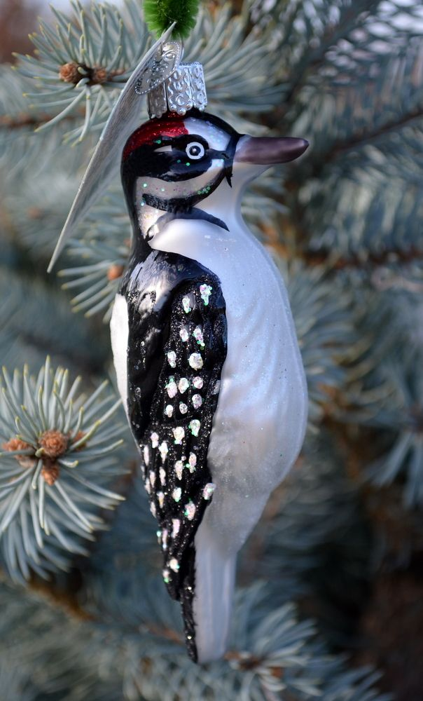 Old World Christmas Vintage Hairy Woodpecker Figurine Ornaments Home Kitchen
