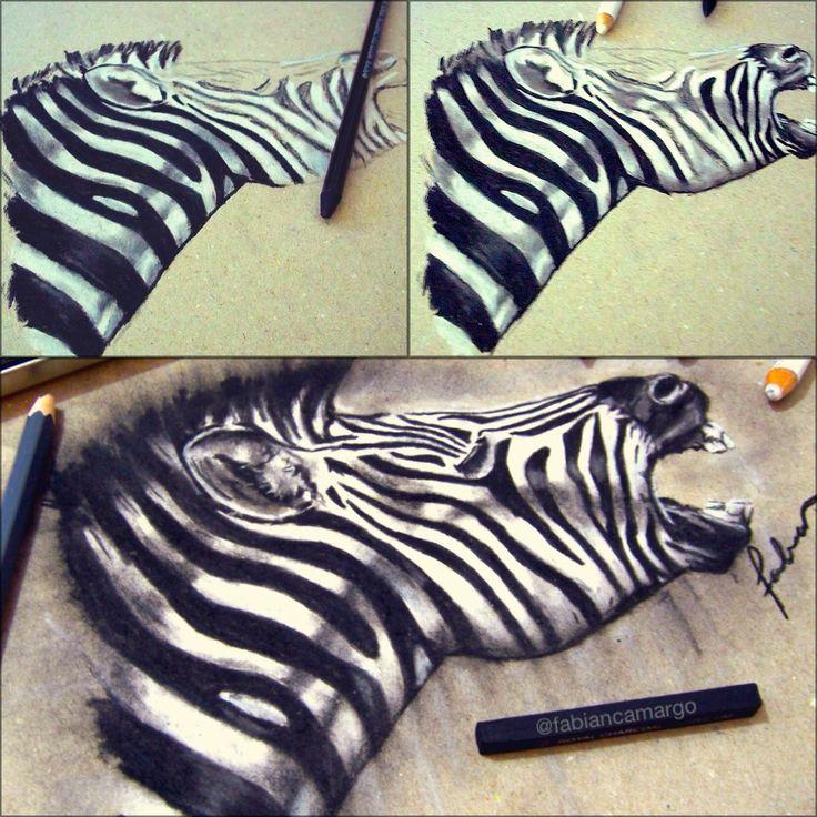 Zebra sketch process !!