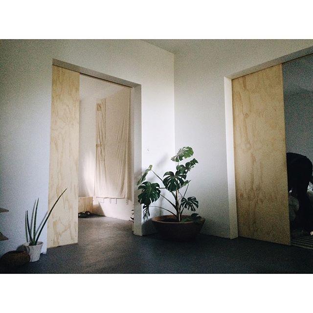 plywood doors. …