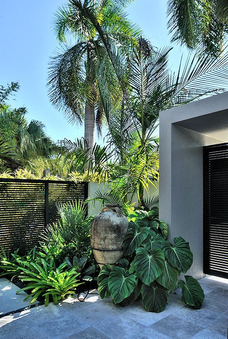 Craig Reynolds Landscape Architecture. Screen fence, lovely tall urn, tropical plants