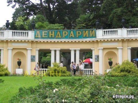 Сочи - парк Дендрарий Достопримечательности Сочи