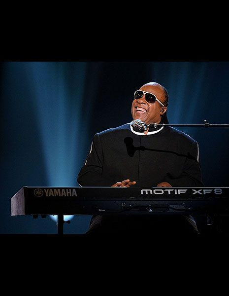 """Life has meaning only in the struggle."" ―Stevie Wonder"