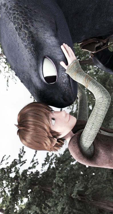 Just a boy and his dragon…Hiccup and Toothless.