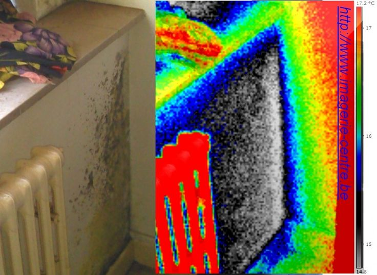 566 best Thermographie   Thermography images on Pinterest Centre - hygrometrie dans une maison