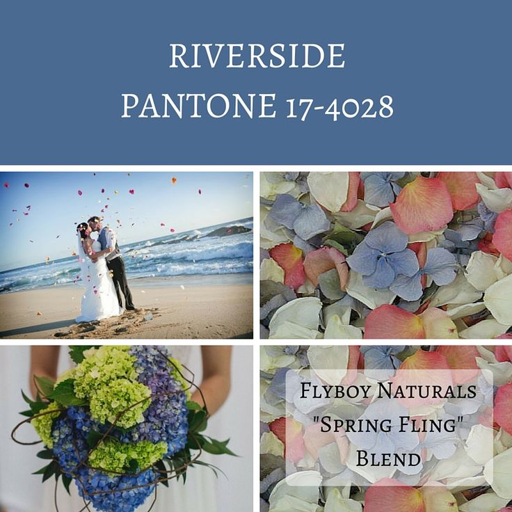 Calling All Fall Brides: See Pantone's Picks for the Top 10 Colors this Fall - Flyboy Naturals, LLC