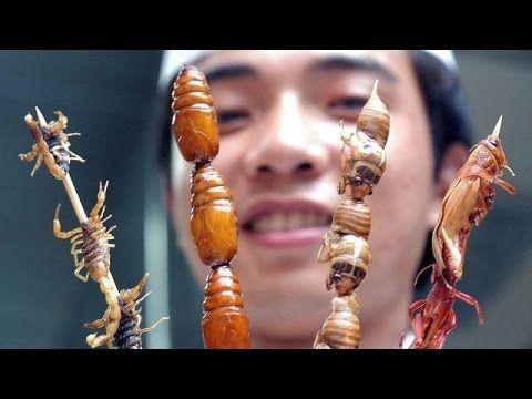 Insekten Essen Doku Deutsch - YouTube