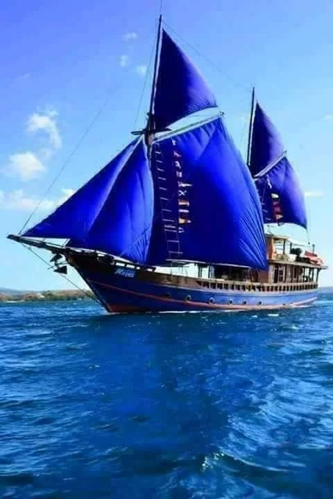 Blue Sails, Blue Sea!