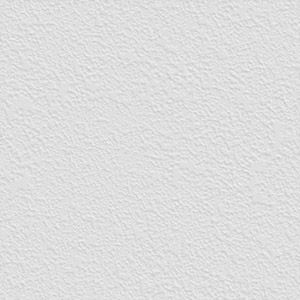 Seamless Wall White Paint Plaster Stucco Texture 02 Copy1