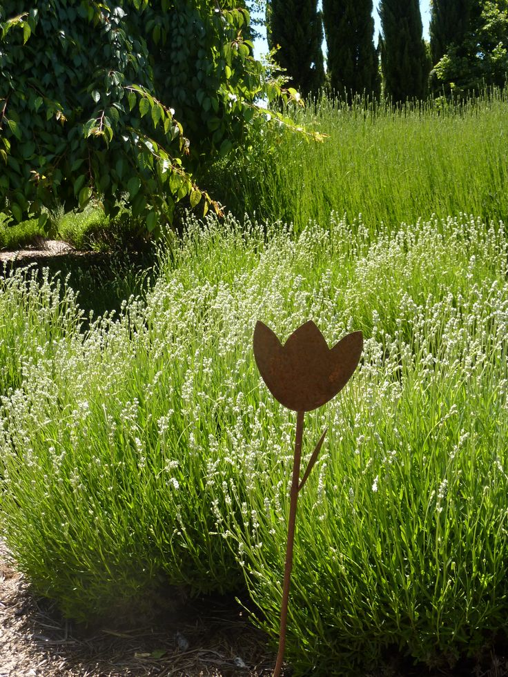 Lavandula Swiss Italian Farm, Hepburn Springs