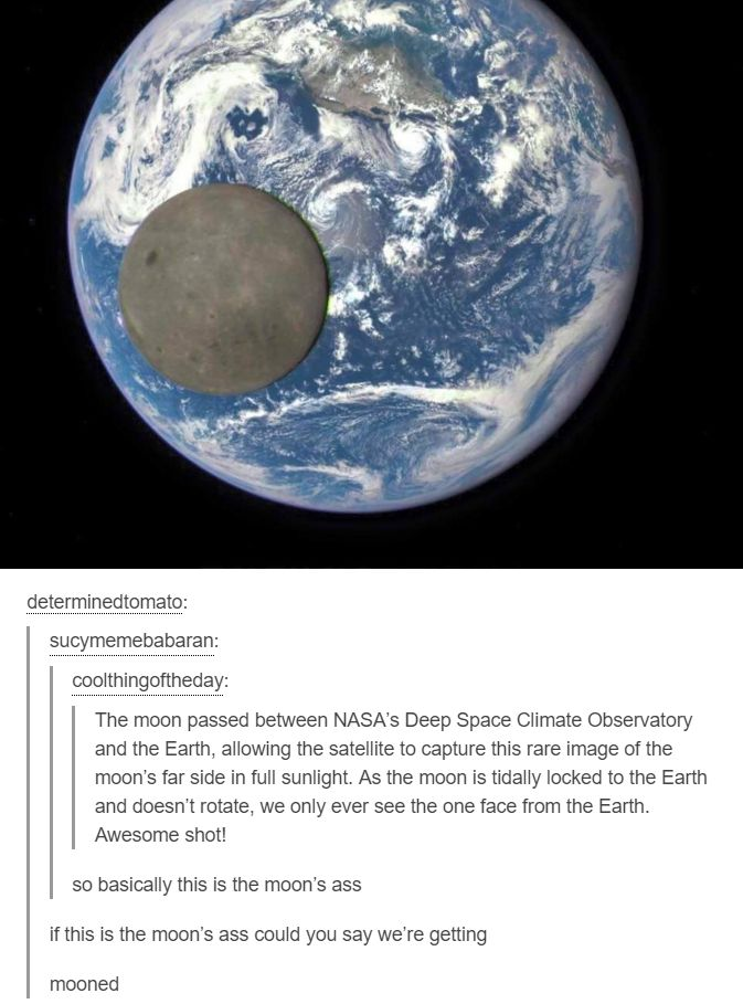 The moon passed between NASA's Deep Space Climate Observatory and Earth