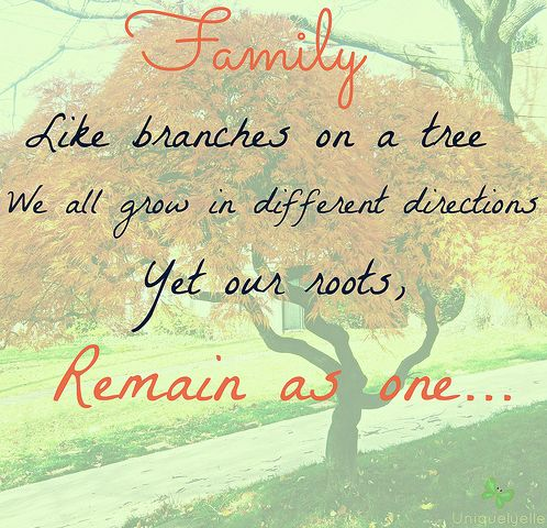 family like branches on a tree we all grow in different direction i like pinterest family quotes quotes and inspirational quotes