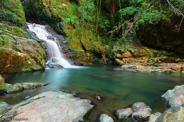 """Waterfall :: Coachwood Falls  Dorrigo National Park, NSW, Australia     Fill Your Autoresponder Everytime with the """"Full Meal Deal"""""""