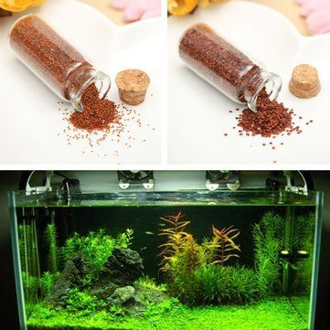 Plant Seed Aquarium Fish Tank Plants Prospects Grass Seed Grass Landscaping Decoration at Banggood
