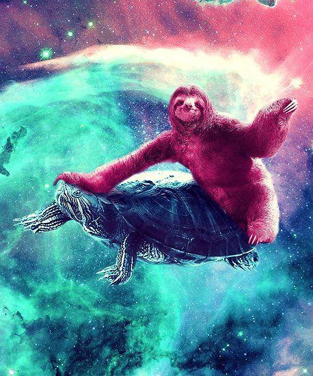 a51a4f351 Buy 'Crazy Funny Space Sloth Riding On Turtle' by SkylerJHill as a T-Shirt,  Classic T-Shirt, Graphic T-Shirt, Women's Chiffon Top, Contrast Tank,  Sticker, ...