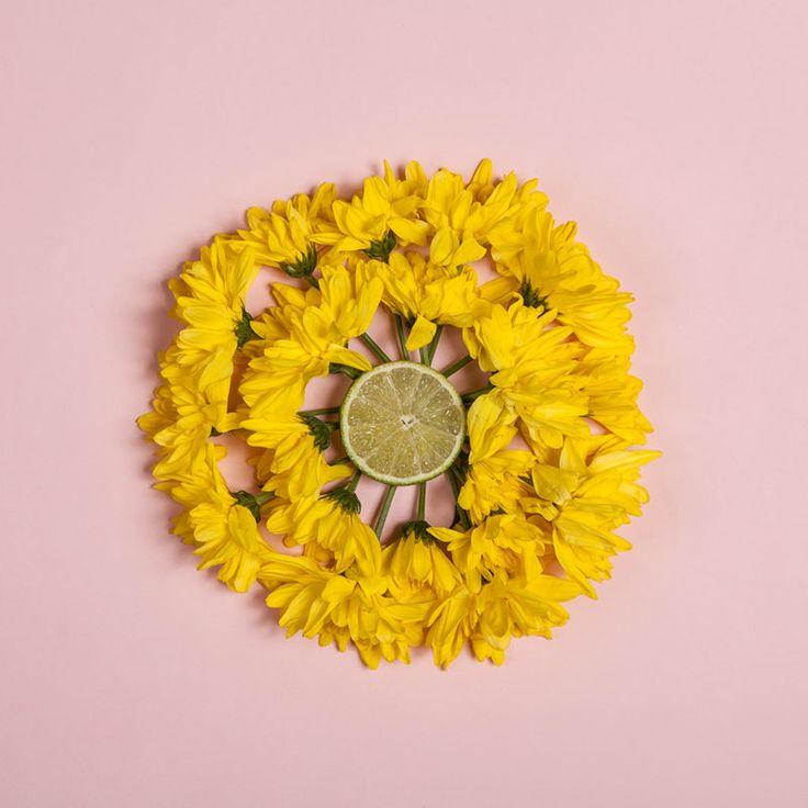 yellow flowers #summer #verano #citricsumer #flores