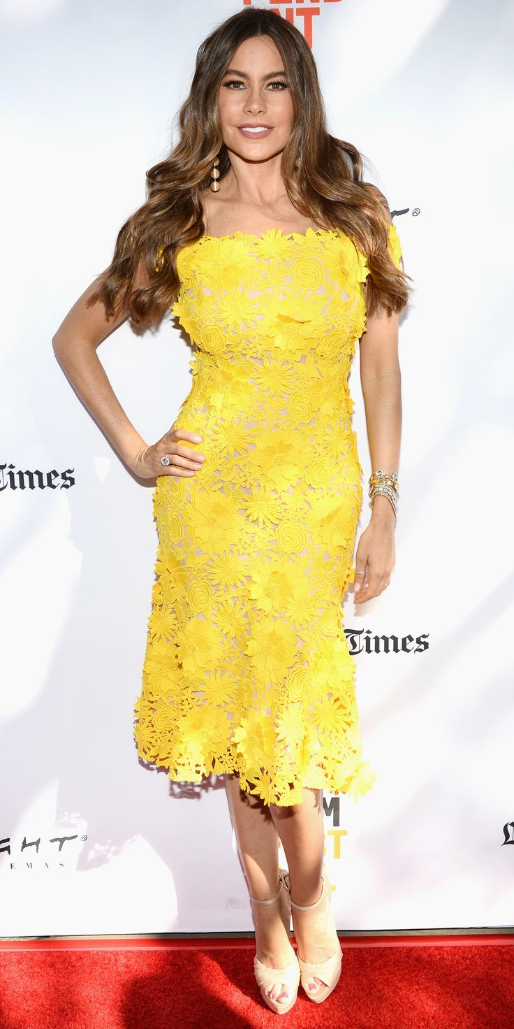 402 Best Fashion- Sofia Vergara Images On Pinterest  My Style, Actresses And Boyfriends-2493