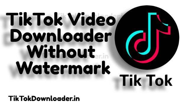 Tiktok Video Downloader Without Watermark Video Watermark Retail Logos
