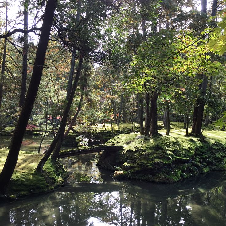 Kyoto, Japan | A conscious foodie and travel guide by Miss Walters