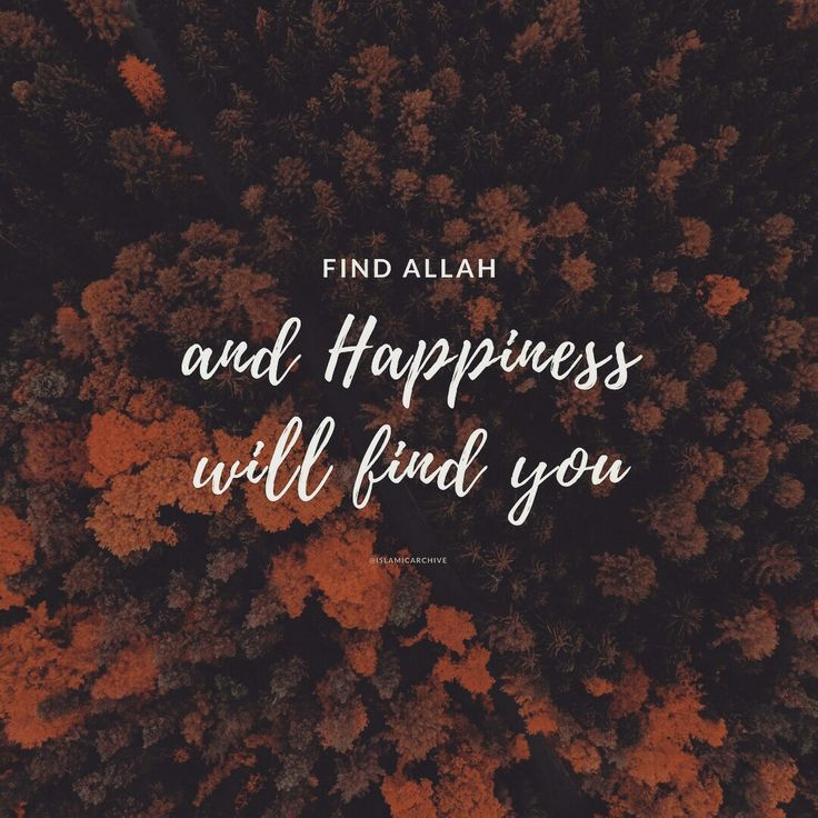 """Find Allah and Happiness will find you."""
