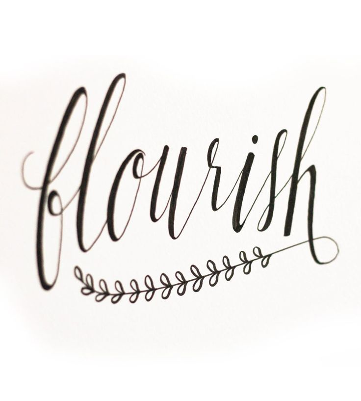 Flourish design calligraphy typography pinterest