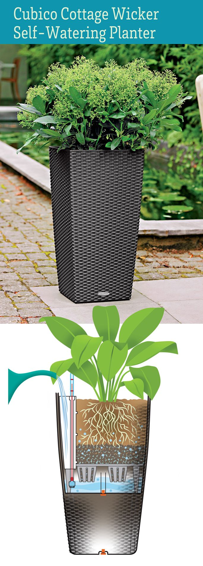 The big list of self watering planters for stylish gardening anywhere - Self Watering Planter Elevates Your Plants In Style