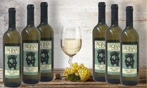 Groupon - 6 bottiglie di vino Pinot Grigio IGT Veneto con spedizione gratuita. Prezzo deal Groupon: €49,90